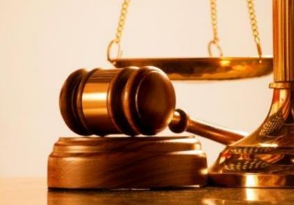 como seguro de responsabilidade civil protege de indenizações